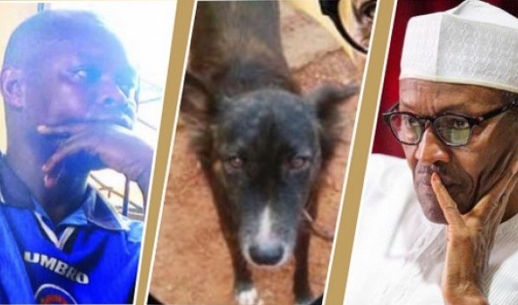 The man who named his dog, Buhari, By Reuben Abati