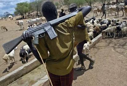 Disarm The Fulani Herdsmen–G9