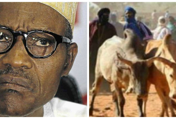 "Update: Breaking: ""You want Buhari to give you security? You'll wait forever. It's not Buhari's job to protect so called Nigerians, if he gives orders to security agencies and nobody obeys, then what? under normal clime Buhari should have resigned longtime ago, he has no integrity left in him, until he secures emergence of Fulani-Islamic-State under Sokoto Caliphate, they will continue this extra-judicial-killings""–International Human Rights Monitor, IHRM, Executive Director, C.U.O. Umunna"